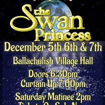 featured image for The Swan Princess Panto